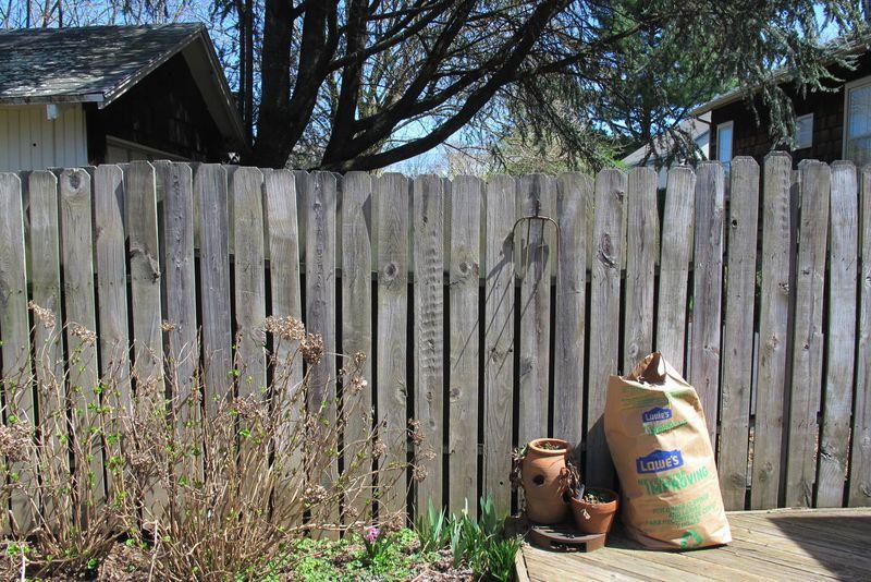 Fence April 2013-002